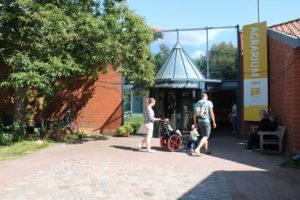 Eine Frau schiebt Kind im Rollstuhl zum Eingang des Ausstellungesgebäudes
