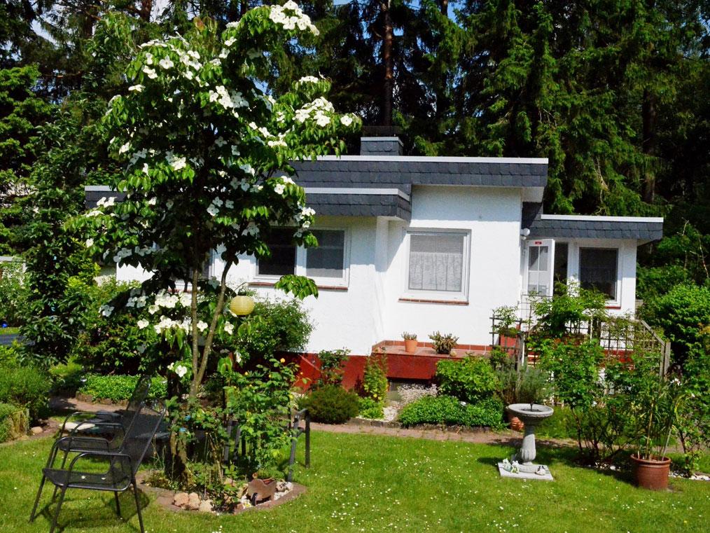 Kleines Flachdachhaus in grünem Garten mit vielen Pflanzen und Sträuchern