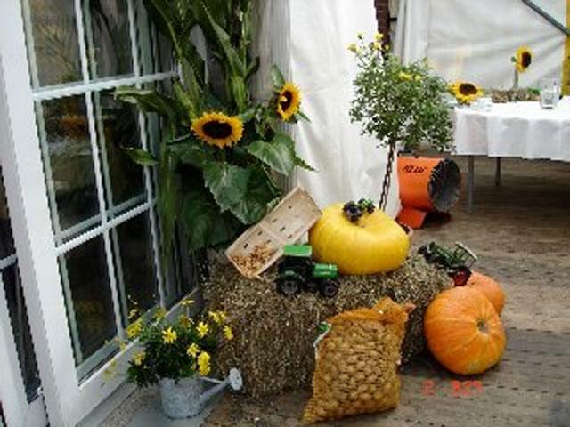 Kürbisse, Kartoffeln und Sonneblumen als Dekoration nett an einem Strohballen platziert