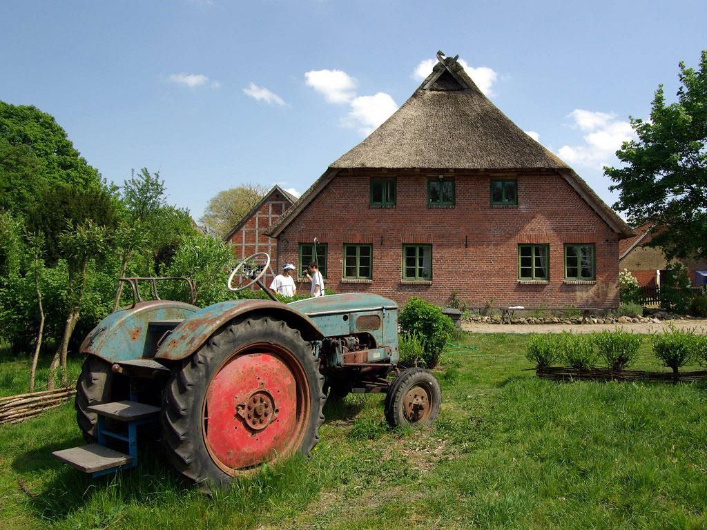 Ein alter Traktor steht auf der grünen Wiese vor dem Reetdachhaus