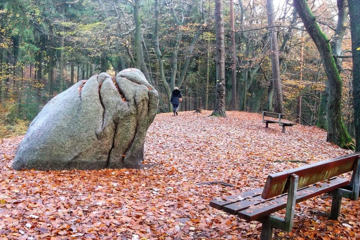 Großer Granitstein im herbstlichen Buchenwald.