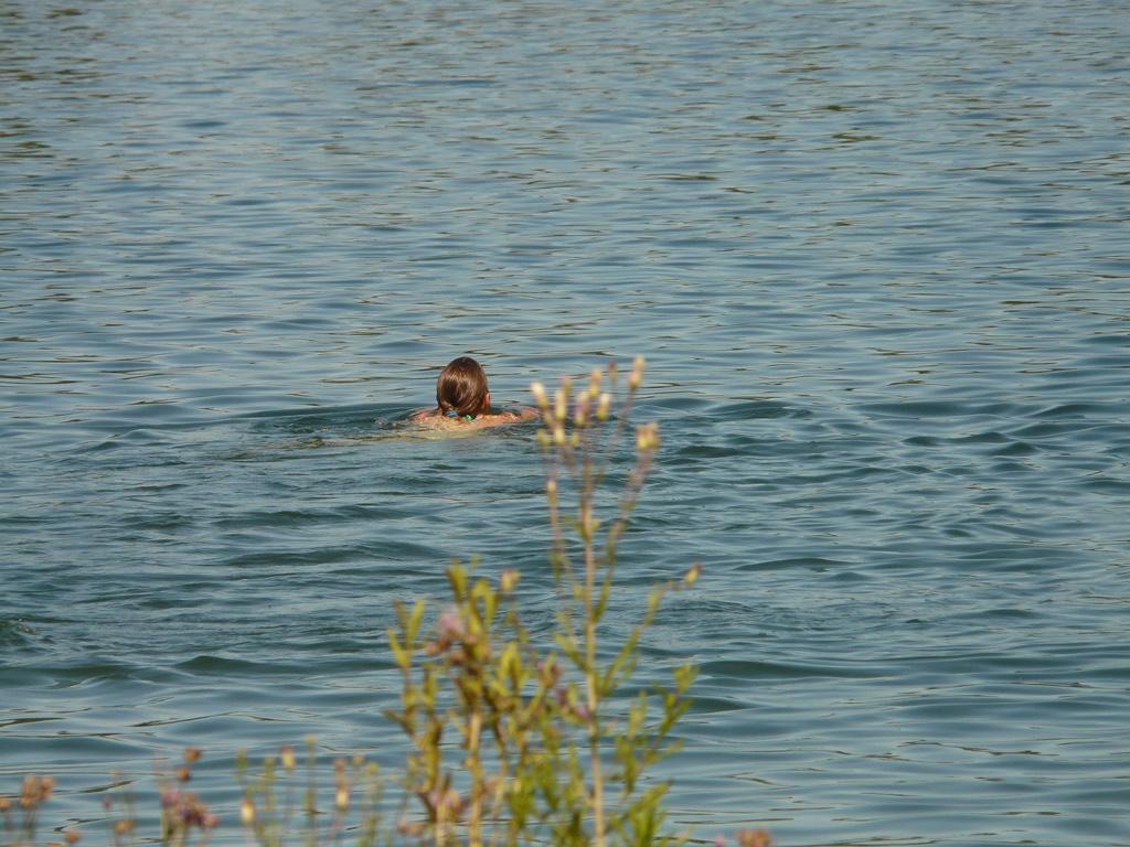 Frau schwimmt im See