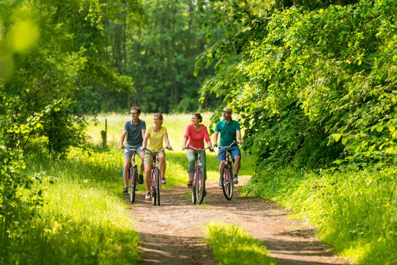 Vier Personen fahren Fahrrad durch die Landschaft